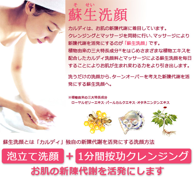 リフレッシュで蘇生洗顔。基本的な使用方法・効果的な使用方法