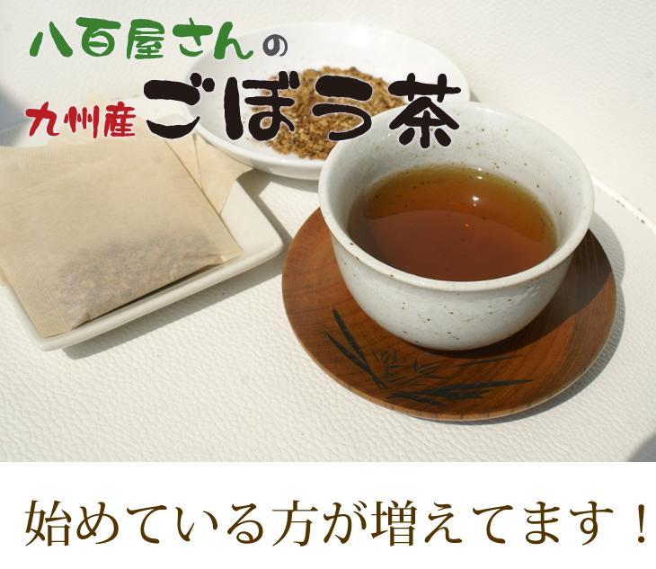 【送料無料】ごぼう茶 国産 送料無料 ティーパック(2.5g×30包)ゴボウ茶 牛蒡