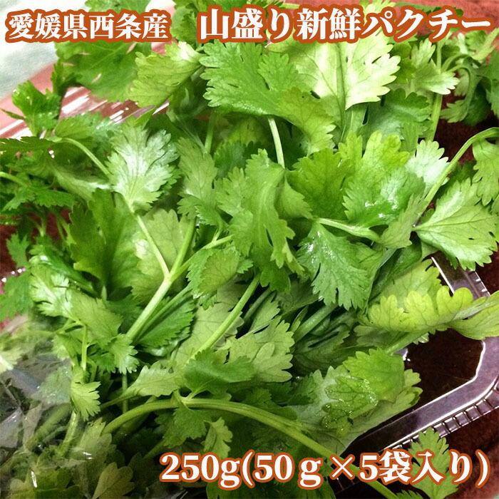 愛媛県西条市産 大盛り新鮮パクチー250g