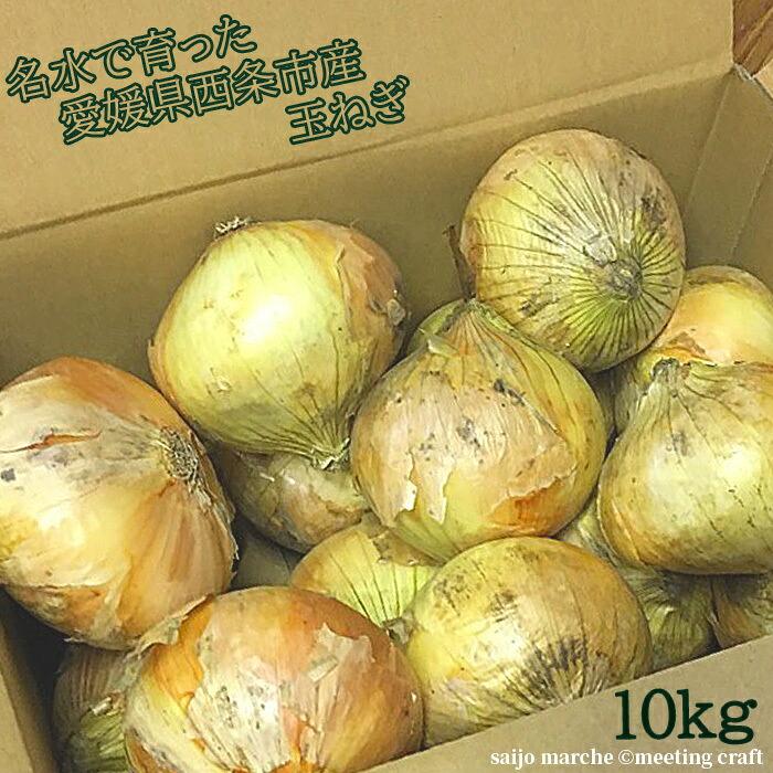 名水で育った 愛媛県西条市産の玉ねぎ 10Kg サイズバラバラ