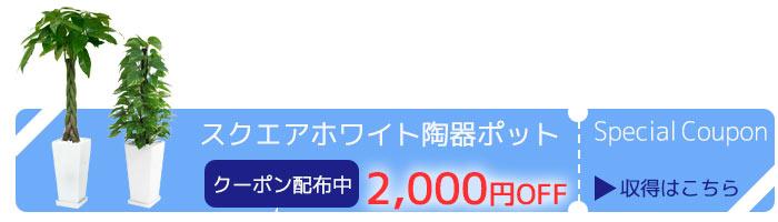 1820円引き