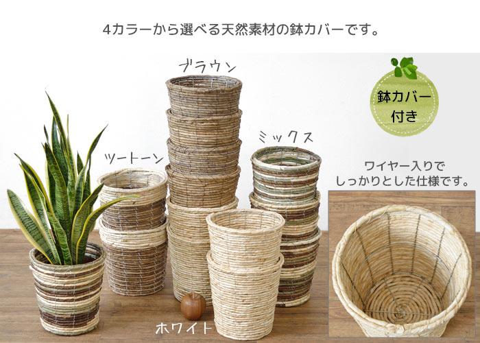 選べる鉢カバー