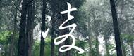 凌(SHINOGI)
