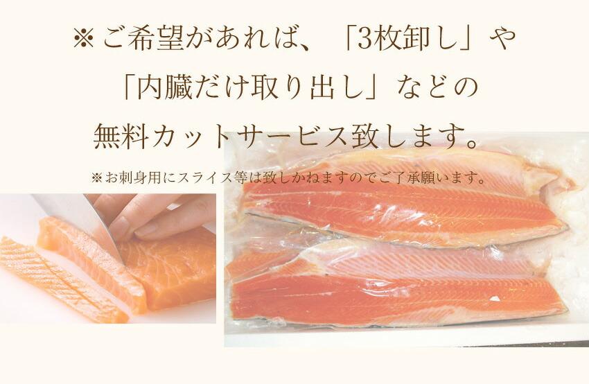 絹姫サーモンサイズ