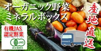 オーガニック 野菜   有機栽培