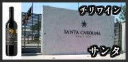 サンタ・カルメネール/プティ・ヴェルド