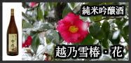 越乃雪椿・花・純米吟醸