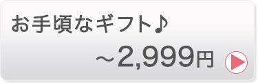 〜3999円
