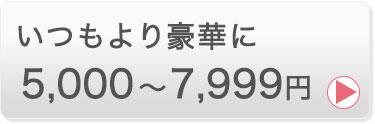 5000〜7999円