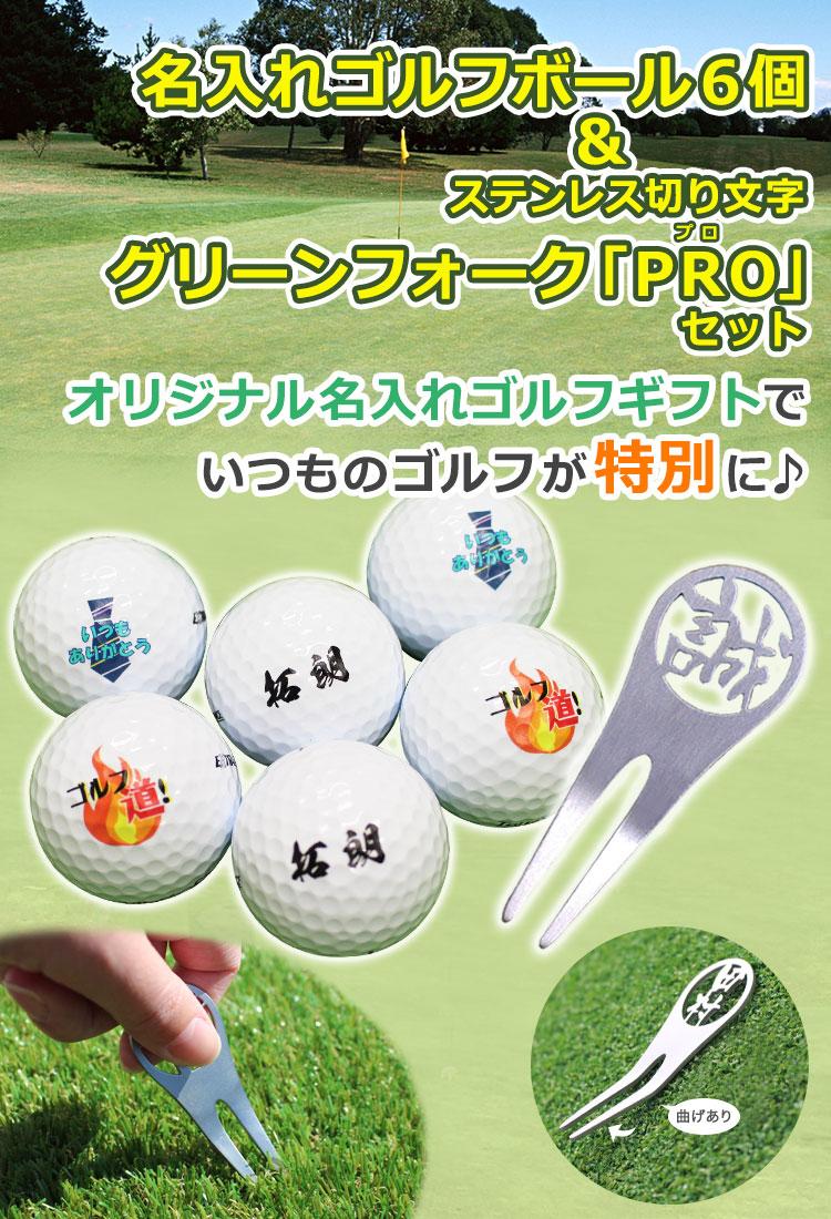 名入れゴルフボール6個&ステンレス切り文字グリーンフォーク「PRO」