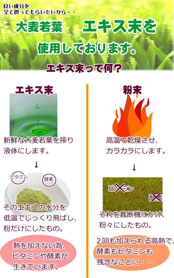 乳酸菌青汁ゼリーα5