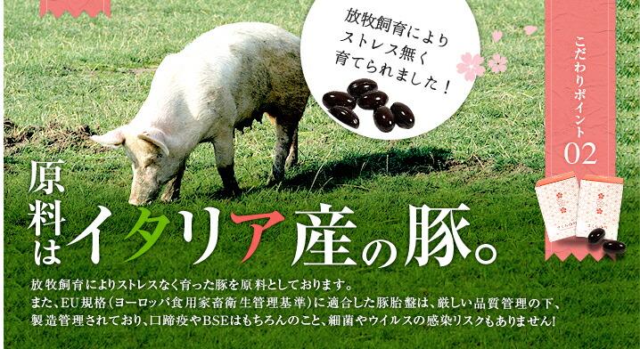 原料はイタリア産の豚。