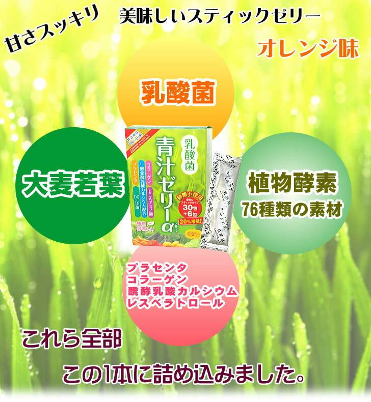 乳酸菌青汁ゼリー1