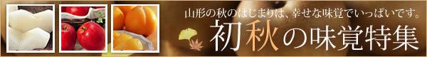 初秋号特集