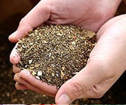 自家製の肥料