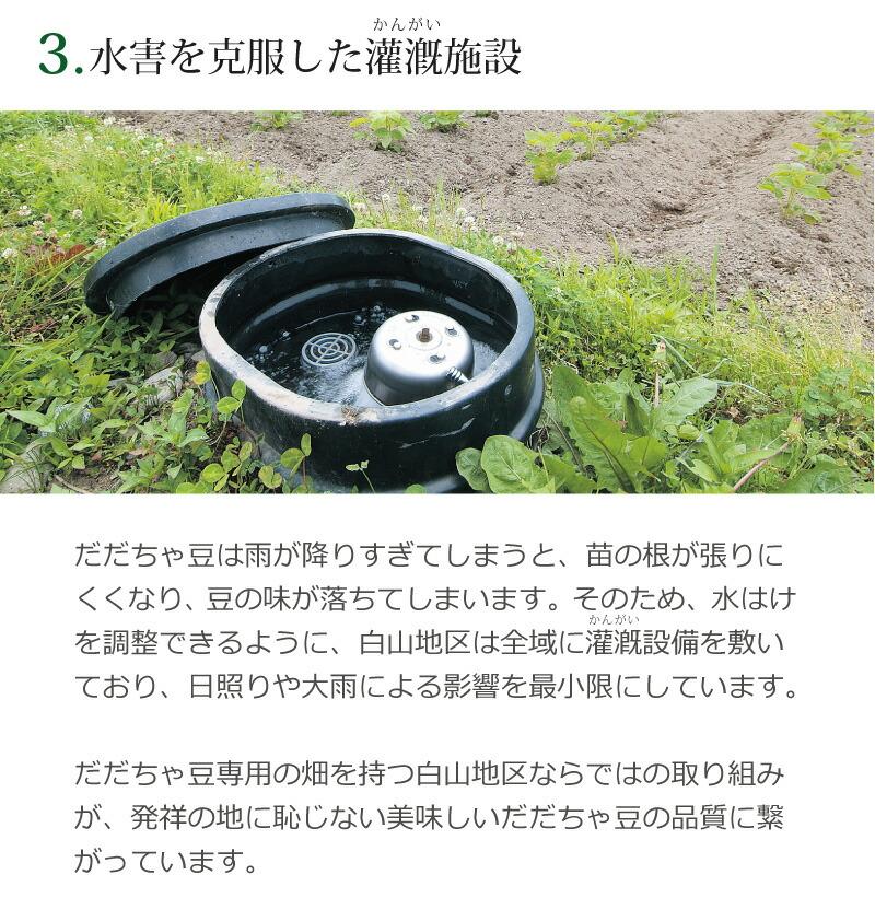 3.水害を克服した灌漑施設