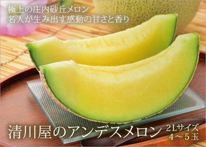 清川屋のアンデスメロン2L×4〜5玉