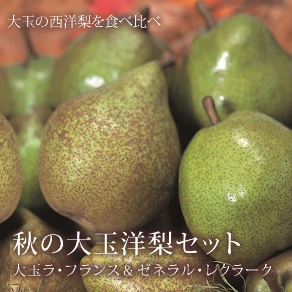 秋の大玉洋梨セット