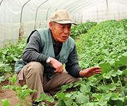 生産者の川村さん
