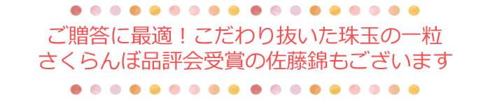 ご贈答に最適!こだわりぬいた珠玉の一粒 さくらんぼ品評会受賞の佐藤錦もぜひ