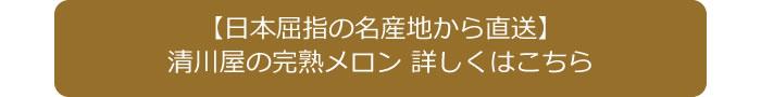 清川屋の完熟メロン 詳しくはこちら