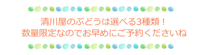 清川屋のぶどうは選べる3種類