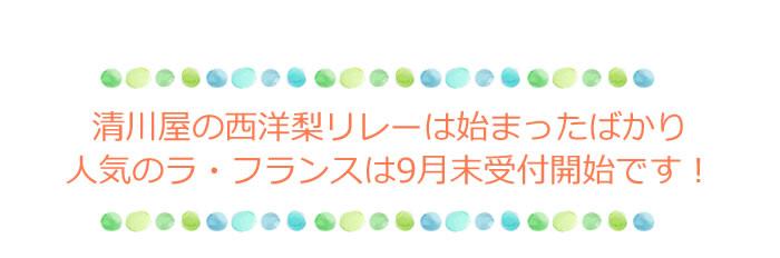清川屋の西洋梨リレーは12月末まで続きます