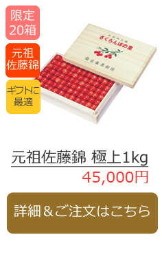 元祖佐藤錦 極上1kg