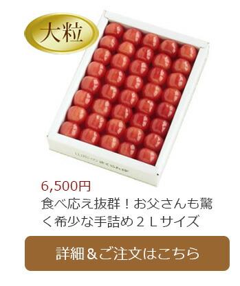 父の日佐藤錦 300g化粧箱入り(2Lサイズ)