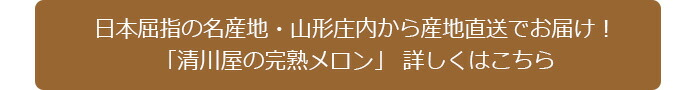 日本屈指の名産地・山形庄内の完熟メロン
