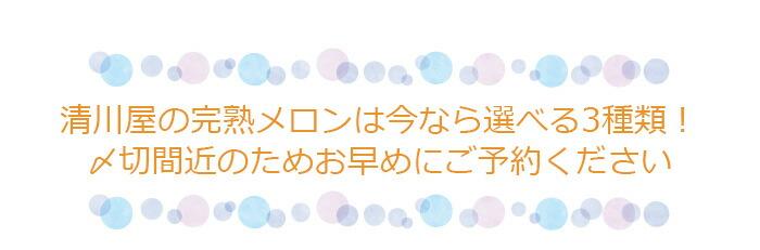 清川屋の完熟メロンは選べる3種類