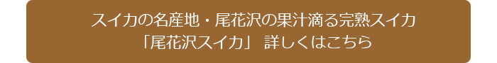 スイカの名産地・尾花沢の絶品スイカ 詳しくはこちら