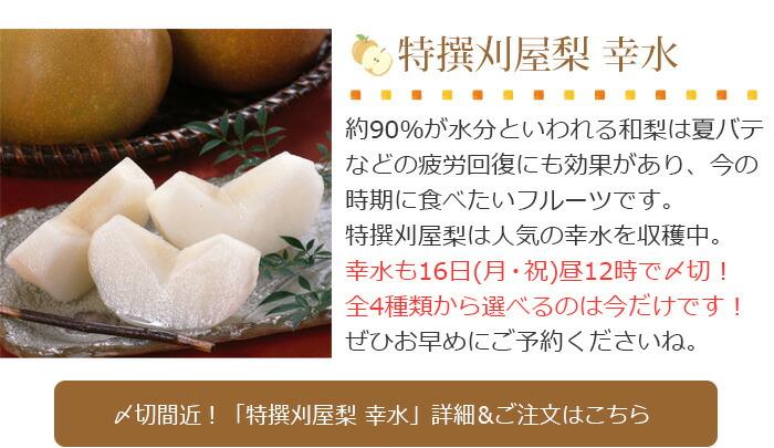 特撰刈屋梨「幸水」★16日昼12時〆切です!