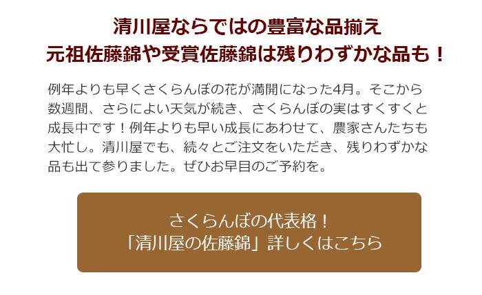 清川屋の佐藤錦