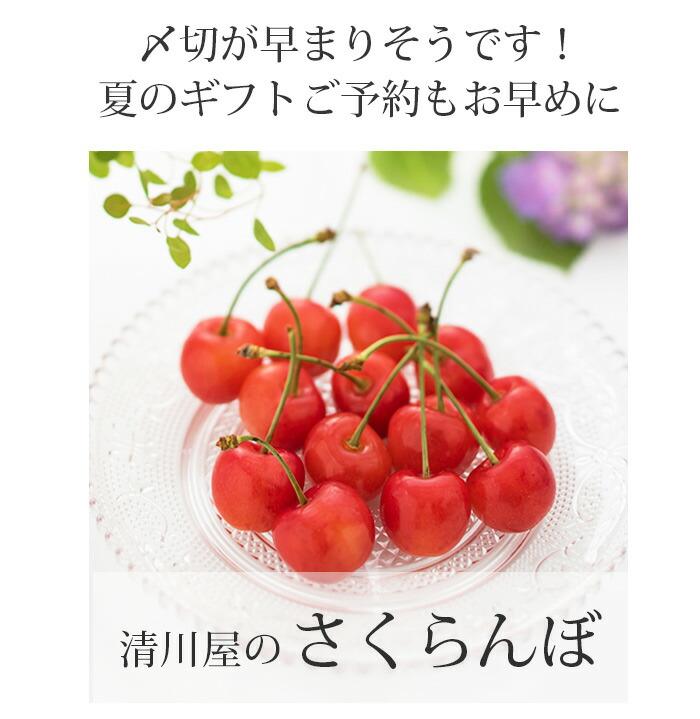 清川屋のさくらんぼ