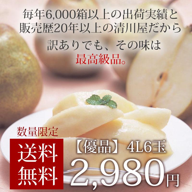 数量限定!送料無料2,980円
