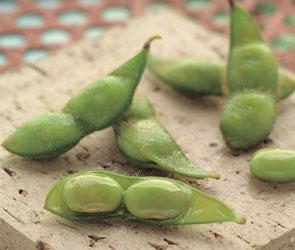 素材には枝豆の王様・だだちゃ豆を使用