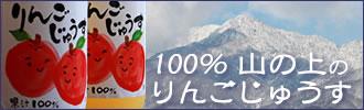南信州 まつかわ町産 化学肥料・落下防止剤を使わず有機堆肥でじっくり育てた山の上のりんご 100%りんごじゅーす