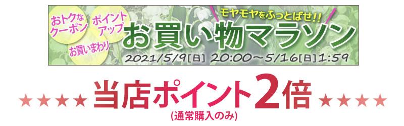 ちこり村の新春◇お買い物マラソン