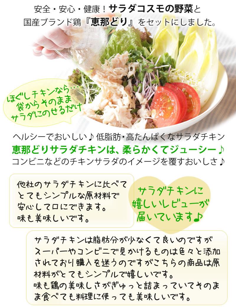 野菜をたっぷり食べられるセット