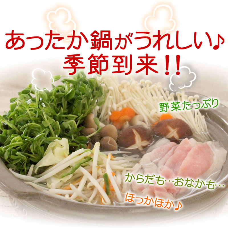 サラダコスモのカット野菜