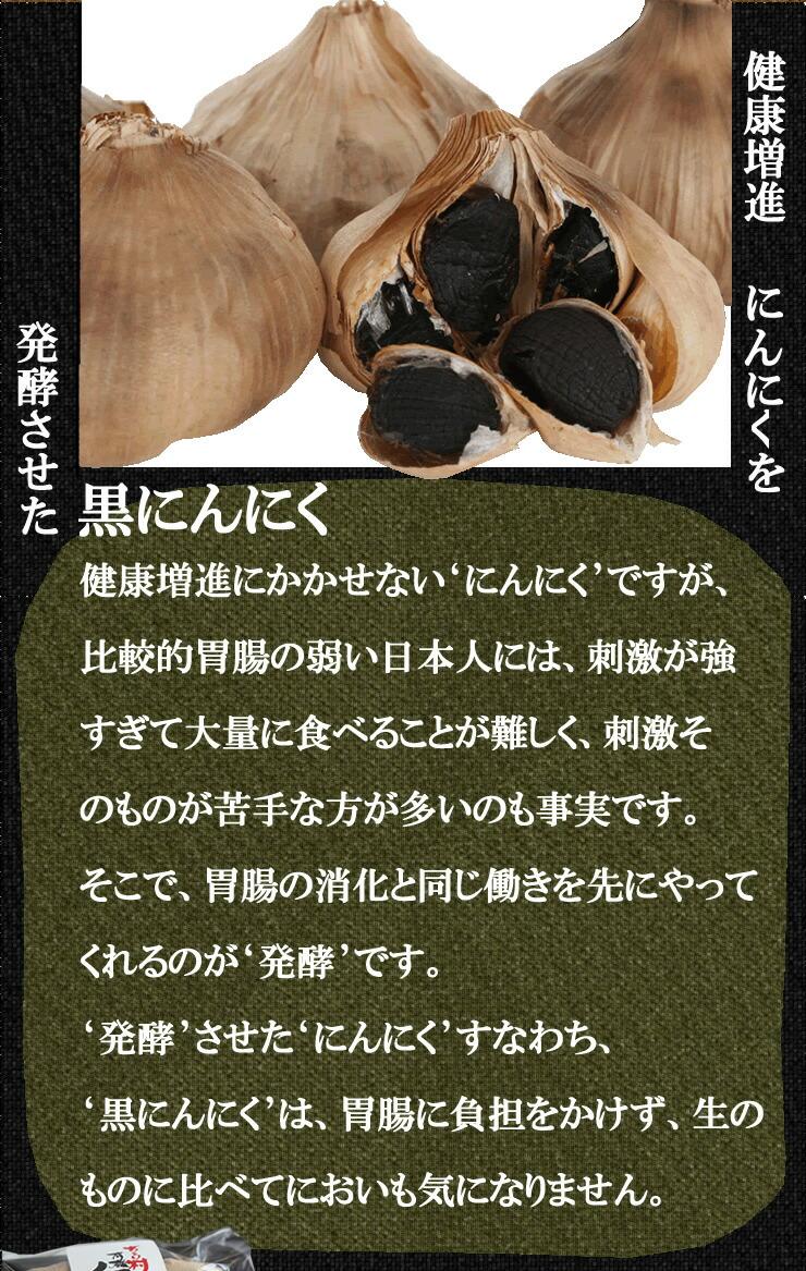 発酵熟成黒にんにくドリンク