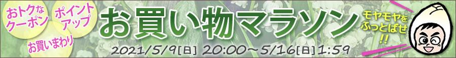ちこり村◇お買い物マラソン