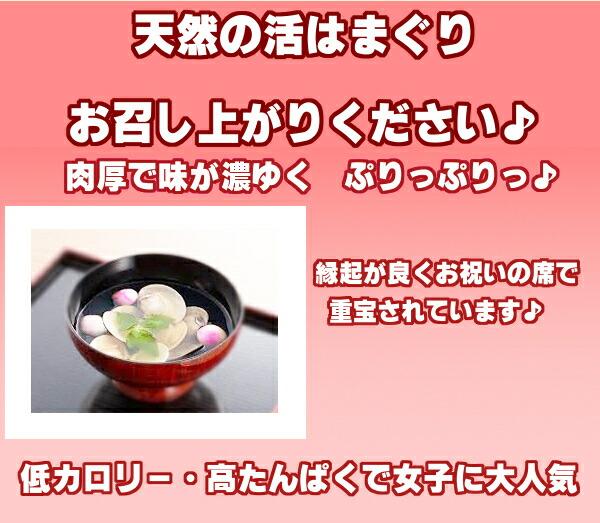 熊本県有明海産【天然地物活はまぐり】縁起が良いと言われる食材です。低カロリー・高たんぱくで女子に大人気。