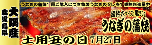 鹿児島県大隅さ産うなぎの蒲焼