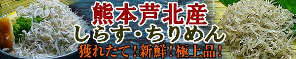 熊本県芦北産ちりめんじゃこ・釜揚げしらす