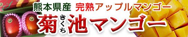 熊本県産|菊池完熟マンゴー