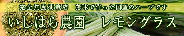 熊本県産|いしはら農園|完全無農薬栽培レモングラス