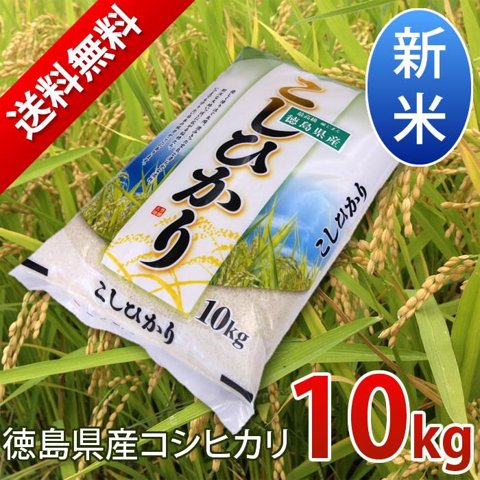 徳島県産コシヒカリ10kg送料無料