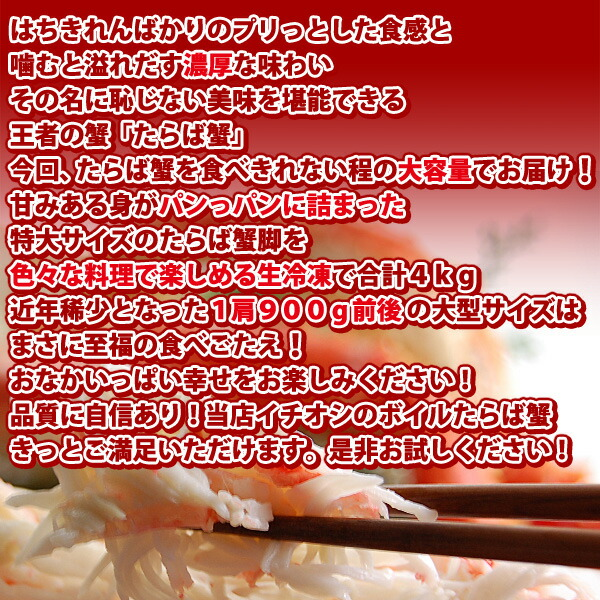 lfa04261_02.jpg